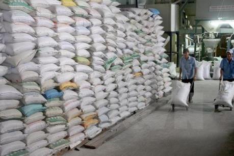 Long An đối thoại trực tiếp với các doanh nghiệp xuất khẩu gạo