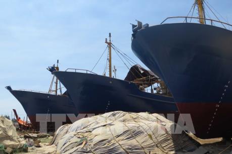 Bình Thuận đề nghị bổ sung thêm 50 tàu cá theo Nghị định 67