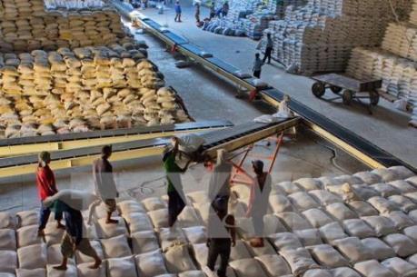 Từ 0 giờ ngày 25/4, mở hệ thống đăng ký tờ khai xuất khẩu gạo tồn tại cảng