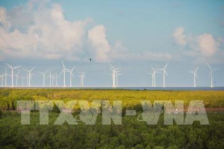 Làm gì để đáp ứng nhu cầu năng lượng tái tạo đang tăng nhanh?