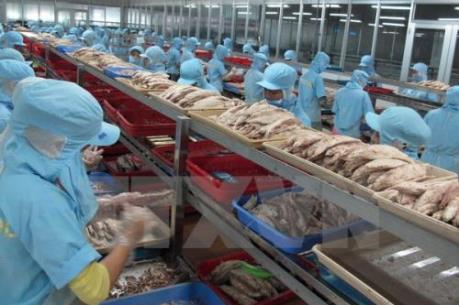 Doanh nghiệp Việt lo lắng trước chương trình giám sát nhập khẩu thủy sản của Mỹ