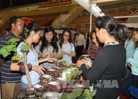 Nhiều sản phẩm hàng hóa Việt Nam đã chinh phục được người tiêu dùng