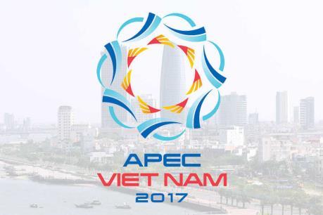 Tuần phim APEC Việt Nam 2017 chính thức khai mạc tại Đà Nẵng