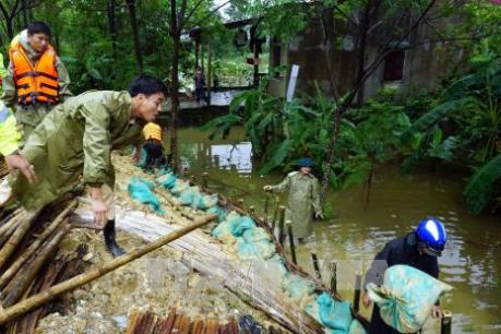 Cứu đê sông Vinh trước nguy cơ bị vỡ do mưa lũ