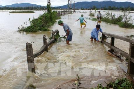Hàng nghìn hộ dân ngoài đê ở Nghệ An vẫn bị ngập nước