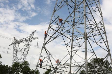 Lưới điện truyền tải không theo kịp tiến độ dự án điện mặt trời
