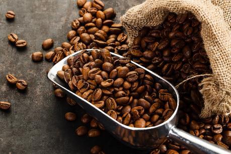 Dự báo giá cà phê tuần từ 23/10- 28/10
