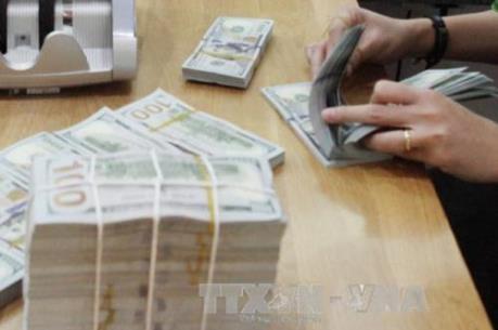 Chuyên gia dự đoán đồng USD sẽ tiếp tục giảm giá