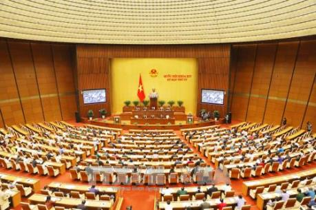 """Kỳ họp thứ 4, Quốc hội khóa XIV: Có biểu hiện """"hành chính hóa"""" quan hệ hình sự"""
