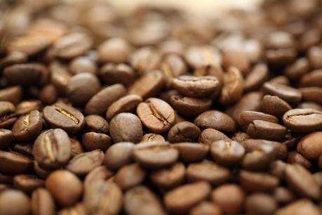 Dự báo giá cà phê tuần từ 13 - 18/11