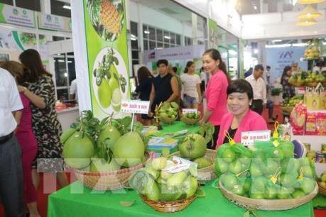 Doanh nghiệp Italy quan tâm đến các sản phẩm nông nghiệp Việt Nam