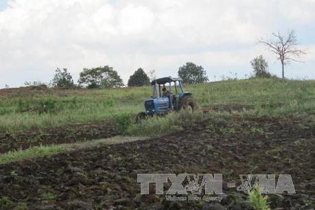 Tập trung thanh tra xử lý vi phạm về quản lý, sử dụng đất