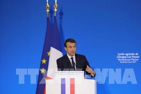 Pháp tiếp đón lãnh đạo của 140 công ty đa quốc gia