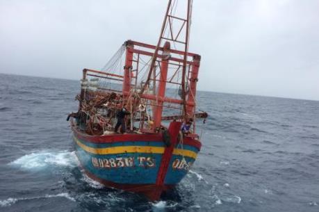 Trợ giúp thông tin y tế cho ngư dân làm việc trên biển