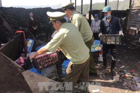 Xử phạt nhiều vụ trái cây ngoại tuồn lậu vào chợ