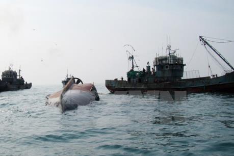 Cứu sống 3 ngư dân gặp nạn do tàu bị chìm