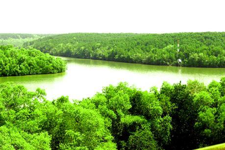 Bến Tre gia hạn thêm một năm đối với dự án điểm du lịch sinh thái Phú Bình
