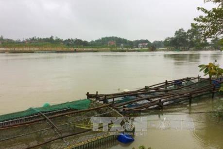 Thừa Thiên - Huế đầu tư gần 12.000 tỷ đồng cho quy hoạch thủy lợi