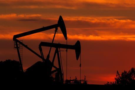 Quyết định ngừng cấp vốn cho lĩnh vực dầu khí của WB khiến châu Phi lo lắng