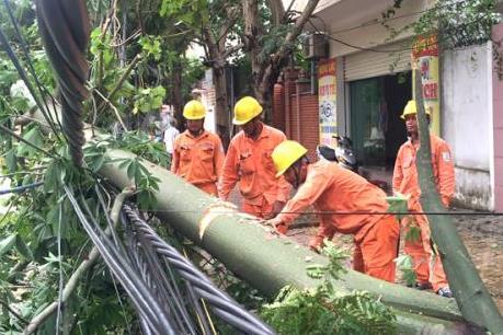 Ngành điện phía Bắc chủ động đối phó với bão số 10