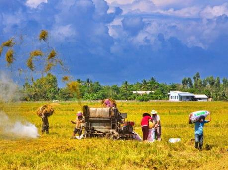 Hội nghị giao ban công tác Hội Nông dân và phong trào nông dân khu vực Đông - Tây Nam bộ