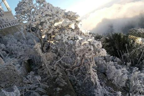 Mưa tuyết phủ kín đỉnh Fansipan