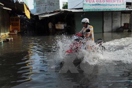 Cảnh báo triều cường vượt mức báo động III tại Thành phố Hồ Chí Minh