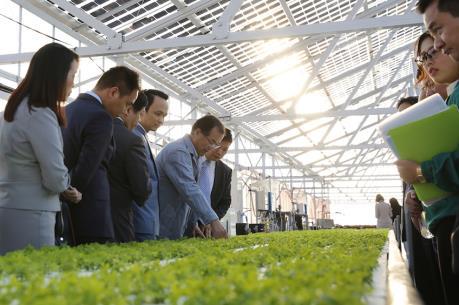 FLC dự kiến đầu tư 1,5 tỷ USD vào nông nghiệp công nghệ cao