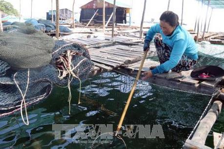 Ứng phó với bão số 16 tại Bình Phước