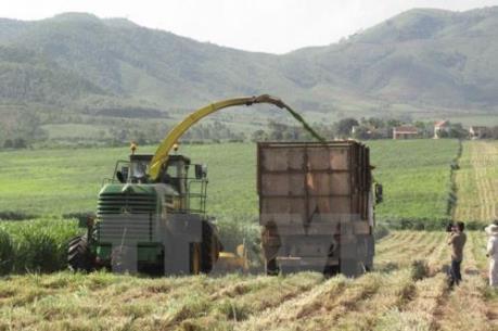 Nghệ An nợ đọng xây dựng nông thôn mới trên 500 tỷ đồng
