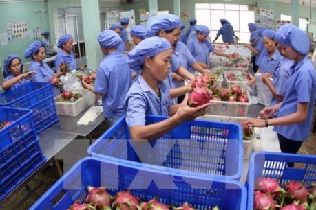 Kỷ lục mới của xuất khẩu nông, lâm nghiệp và thủy sản