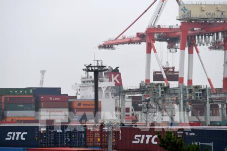 WB: Kinh tế toàn cầu sẽ chấm dứt giảm tốc trong năm 2020