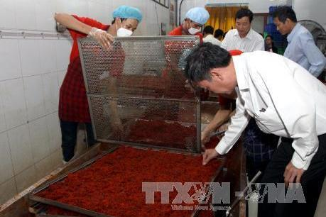 Tp Hồ Chí Minh thu giữ số lượng lớn thực phẩm bẩn, không rõ nguồn gốc  