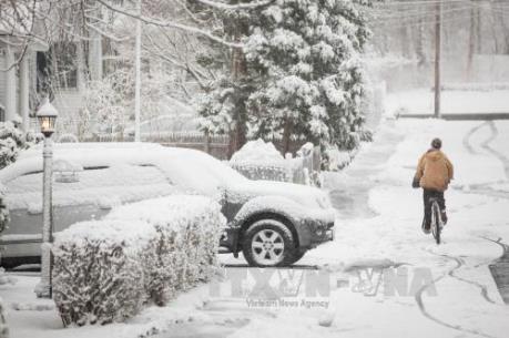 Hàng chục người thiệt mạng do giá lạnh và lở tuyết tại Mỹ, Ấn Độ