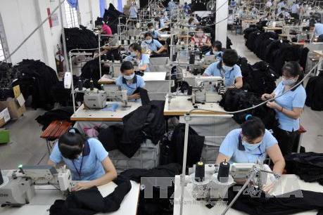 Thấy gì từ chất lượng và hiệu quả hoạt động của doanh nghiệp Việt?