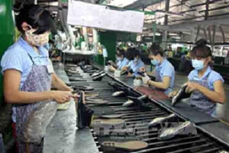 Toàn bộ công nhân Nhà máy sản xuất giày da Tam Cường đã đi làm trở lại