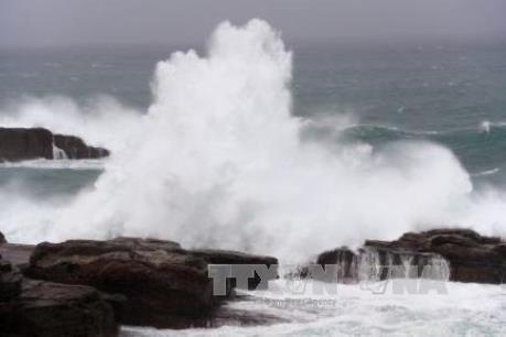 Tháng 6 sẽ có 1-2 cơn bão hoặc áp thấp nhiệt đới