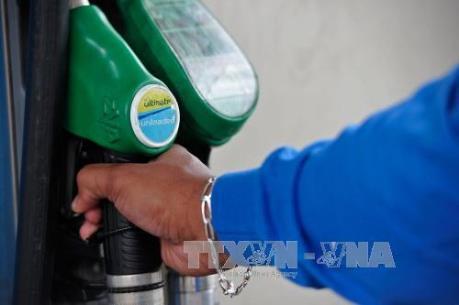 Algeria cân nhắc thay đổi Luật về dầu khí để thu hút vốn đầu tư