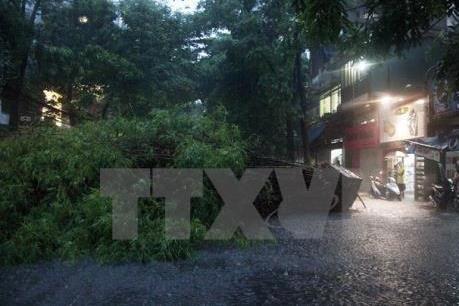 Dự báo thời tiết đêm 14/6: Đề phòng tố lốc, mưa đá, gió giật mạnh