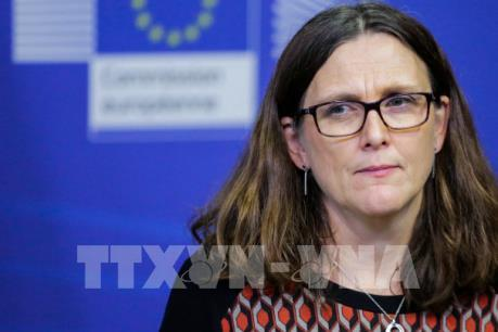 """EU lên sẵn """"kịch bản"""" cho cuộc chiến thương mại với Mỹ"""