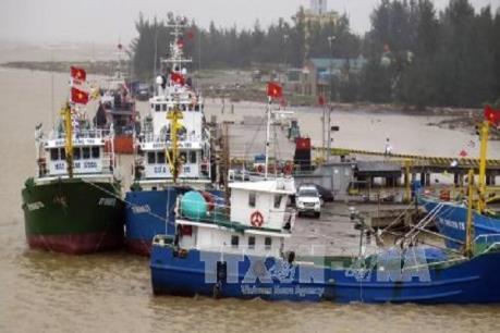 Nhật Bản hỗ trợ ngư dân Quảng Trị lắp đặt đèn LED cho tàu cá