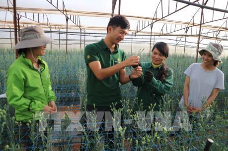 Chính sách chuyển giao công nghệ trong nông nghiệp qua hoạt động khuyến nông