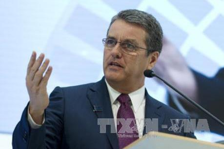 WTO cảnh báo nguy cơ chiến tranh thương mại và suy thoái kinh tế
