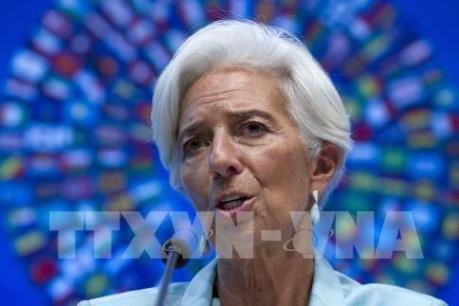 Tổng giám đốc IMF: EU cần tăng cường năng lực quản lý để chuẩn bị cho Brexit
