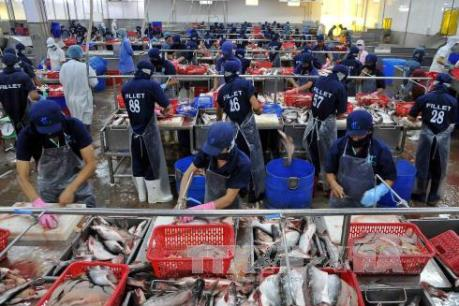 DOC ban hành kết luận cuối cùng về biện pháp chống phá giá cá tra-basa của Việt Nam
