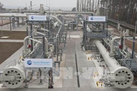Dự án Dòng chảy phương Bắc 2 tạo ra 30.000 việc làm mới tại châu Âu