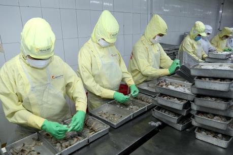 Ngành tôm Việt Nam đối mặt áp lực nguồn cung
