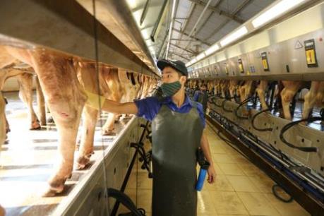 Chăn nuôi tại các vùng có lợi thế