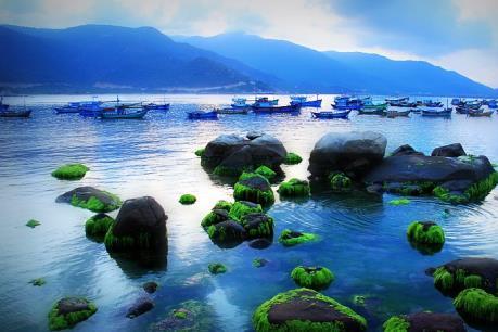 Đến với thiên đường biển đảo Bình Hưng