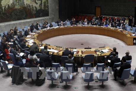 Hội đồng Bảo an Liên hợp quốc hủy họp do đại dịch COVID-19